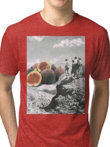 Fig dreams  Tri-blend T-Shirt