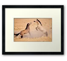stud fight Framed Print