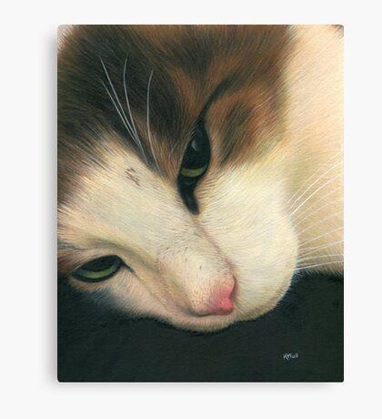 Fatso Canvas Print