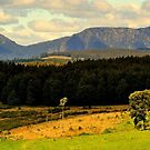 Tasmania Landscape, Sheffield, Mt Roland by photoj