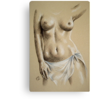 Sheer #4 Canvas Print