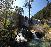 Front view of Jiuzhaigou waterfall by eugenesim