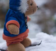 Bear on the slopes. by sandyprints