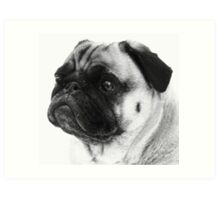 Love Those Wrinkles! Art Print