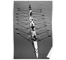 Rowers Poster