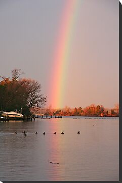 Morning Rainbow #2 by Eileen McVey