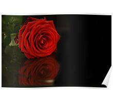 flower reflections II Poster