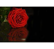 flower reflections II Photographic Print