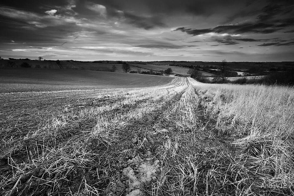 Nightlite, Meander in the Mud BW by Andy Freer