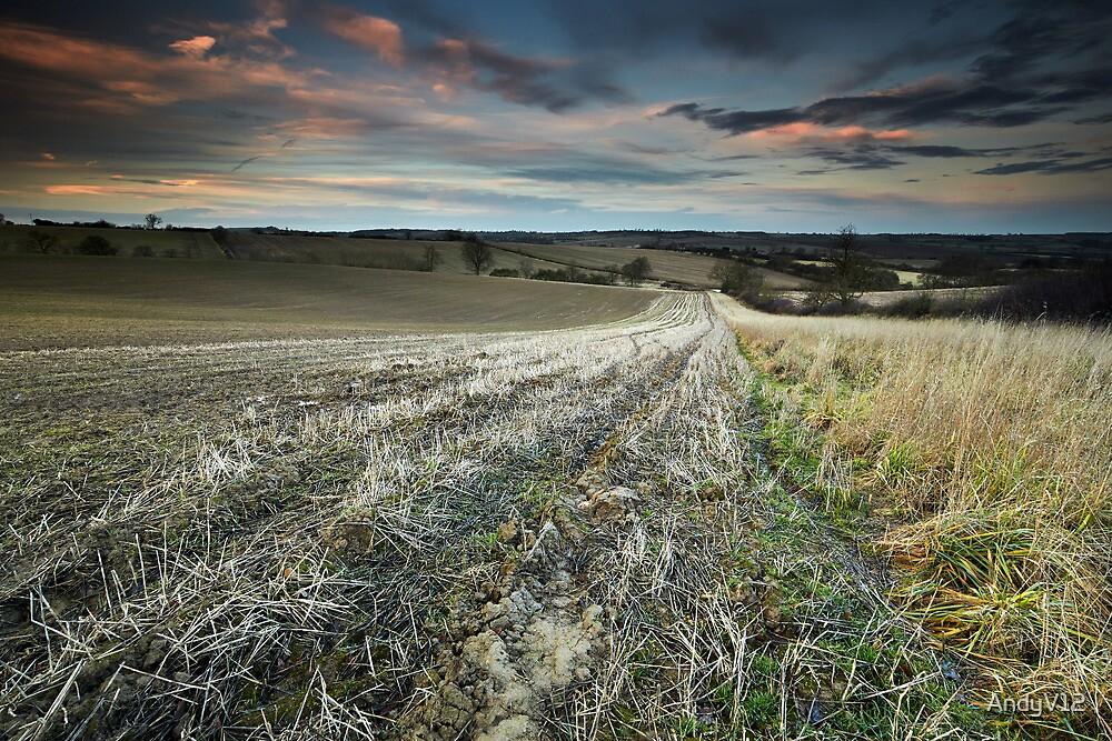 Nightlite, Meander in the Mud by Andy Freer