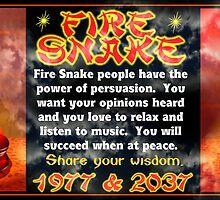 1977 2037 Chinese zodiac fire snake  by Valxart