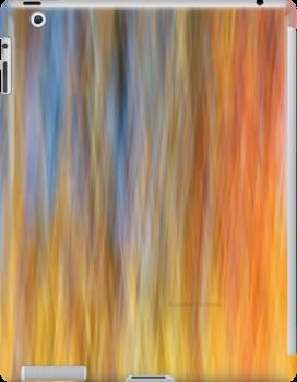 Fall Impression 432 iPad Case by Joseph Rotindo