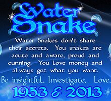 Chinese Zodiac, water snake, 1953, 2013, born by Valxart