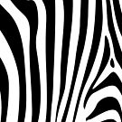 Zebra pattern by nadil