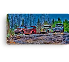 Outed Trucks Canvas Print