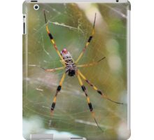 Golden Silk Orb Weaver 2 iPad Case/Skin