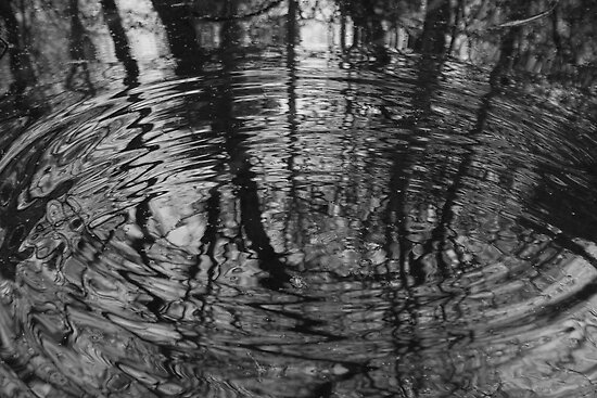 Ripples 2 by James Taylor