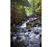 Algonquin Park, Northern Ontario Photographic Print