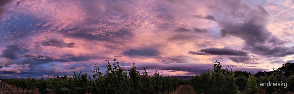 Purple skies over Georges Michel Wine Estate by andreisky