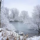 First Snow by Kathilee