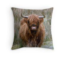 Highland Cow of Scotland Throw Pillow