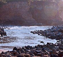 Afternoon Light at Kapaau by jayneeldred