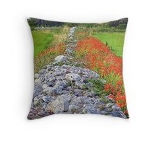 The Dividing Wall Throw Pillow