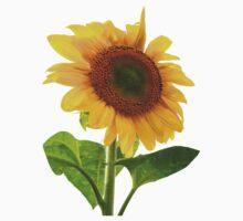 Sunflower Days Kids Clothes