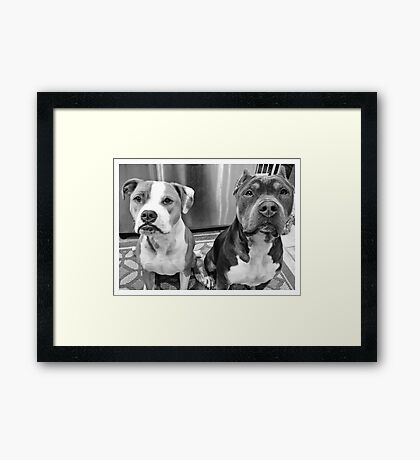 TWO KNUCKLEHEADS Framed Print