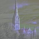 Salisbury Cathedral - Wiltshire, England by Clive
