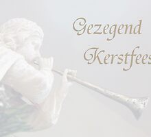 Gezegend Kerstfeest by Paraplu Photography