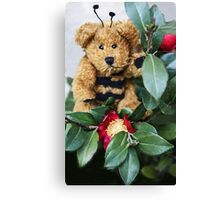 Bumble Bear Canvas Print