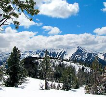 Wallowa Mountains and Eagle Cap Wilderness  by Don Siebel