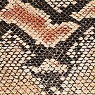 Snake skin background  by homydesign