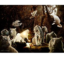 Keepers of the Sacred Feminine  Photographic Print