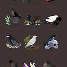 12 Birds of Magic by Ennemme