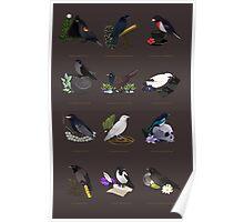 12 Birds of Magic Poster