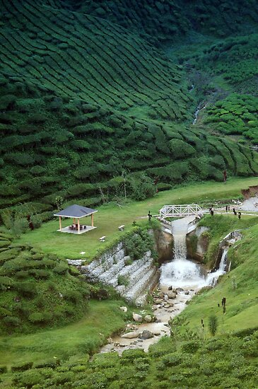 Man made waterfall in exotic tea plantation by hazelong