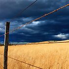 Fenced Off by Izgab
