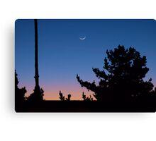 And the moon follows the sun Canvas Print