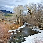Red Willow Creek - Taos Pueblo, New Mexico by Briar Richard