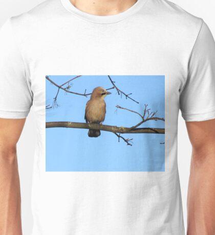 Female Jay Sitting On Branch Unisex T-Shirt