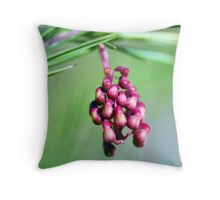 Rosemary Grevillea Close-Up Throw Pillow