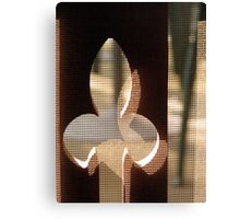 Screen door Canvas Print