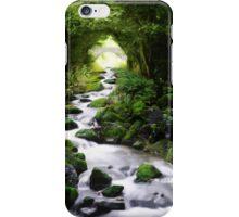 Arden Bridge iPhone Case/Skin