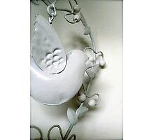 metal dove Photographic Print