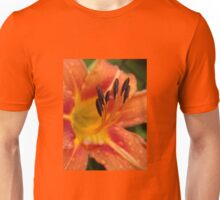 Waiting for the fulfillment ... Unisex T-Shirt