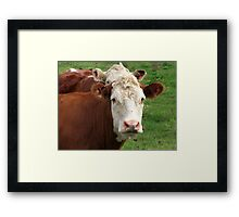 Stay Outta My Pasture Framed Print