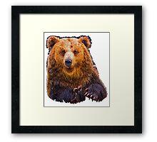 bear - hulk Framed Print
