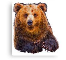 bear - hulk Canvas Print